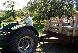 Hayrides, corn maze, company picnics, weddings, and more fun at the apple orchard and cider mill at Alber Orchard, Manchester, Michigan, just outside Ann Arbor and Detroit.